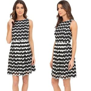 Adrianna Papell Stripe Dot Fit & Flare dress